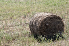 Ready a haystack in the field Stock Images