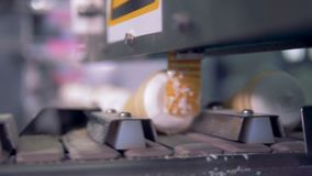 Ready ice-cream wafer cones are moving to the packaging line. stock video
