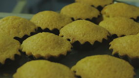 Ready-made cakes. Ready-made pastry, confectioner work HD stock video