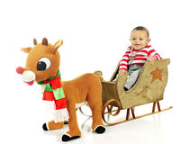 Ready for My Rudolph Ride stock photo