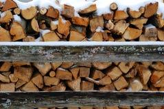 Ready per l'inverno Fotografia Stock