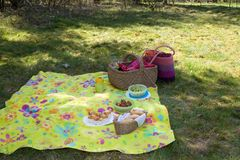 Ready for the picnic. Colourful picnic blanket in the shade of a tree on a warm summerday Royalty Free Stock Photos