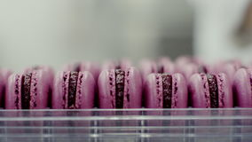 Packaging For Macarons Ready macarons lay in plastic packaging stock footage video of ready pink macarons are lying in plastic packaging stock video footage sisterspd