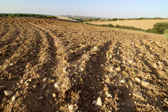 Ready for planting. Tilth field waiting to be cultivated, Saragossa, Spain Stock Image