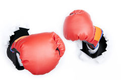 Ready position to fight Royalty Free Stock Images