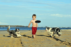 Ready set go. Boy throwing a frisbee for dogs on the beach Stock Images
