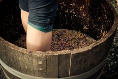 Ready stomp go. Stomping on salt spring island Royalty Free Stock Image
