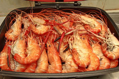 Ready streamed large fresh prawns  in pan. Stock Photo