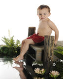Ready for a Swim. An adorable preschool swimmer ready to slide into the water from a rustic old dock. The dock is surrounded by water foliage. On a white Stock Photography