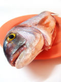 Ready to Cook. Sparus pagrus is called fangre mercan in Turkish. It is so tasty Stock Image