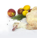 Ready to cook duck  with apples Stock Image