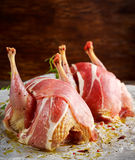 Ready to cook raw seasoned partridges with bacon on crumpled paper. Ready to cook raw seasoned partridges with bacon on crumpled paper Royalty Free Stock Images