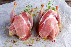 Ready to cook raw seasoned partridges with bacon on crumpled paper. Ready to cook raw seasoned partridges with bacon on crumpled paper Royalty Free Stock Photography