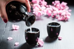 Ready to drink sake with flowers of blooming cherry. On dark table royalty free stock photography