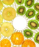 Ready to dry. Close-up of fresh fruit slices on dehydrator tray Royalty Free Stock Photo