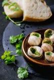 Ready To Eat Escargots De Bourgogne Snails Royalty Free Stock Photography
