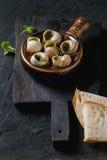 Ready to eat Escargots de Bourgogne snails Stock Images