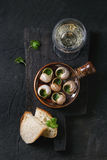 Ready to eat Escargots de Bourgogne snails Royalty Free Stock Photos