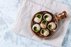 Ready to eat Escargots de Bourgogne snails. Escargots de Bourgogne - Snails with herbs butter, in traditional ceramic pan on textile napkin over blue textured Royalty Free Stock Photos