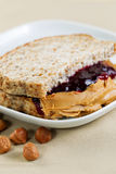 Ready to Eat Peanut Butter and Jelly Sandwich Royalty Free Stock Photos