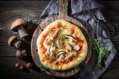 Ready to eat rustic pizza with noble mushrooms and thyme Stock Photos