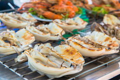 Ready to eat seafood Royalty Free Stock Images