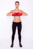 Ready to fight. Concentrated sporty woman in sportwear and boxing gloves looking at camera while standing isolated on white background Royalty Free Stock Images