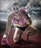 Ready to fight. Photo composite of 4 photos. The main photo was taken in studio with 3 light sources and retouched Royalty Free Stock Photography