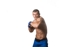 Ready To Fight On White Background Stock Photography
