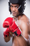 Ready to fight. Royalty Free Stock Photography