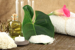 Ready to get pampered?. Composition of spa different supplies Royalty Free Stock Images