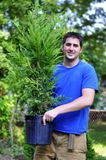 Ready to Plant royalty free stock photo