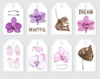 Ready to print elements with violet orchids. royalty free illustration