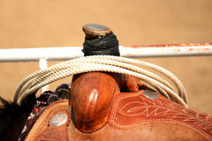 Ready to ride. Western saddle and lasso on a horse closeup Stock Images