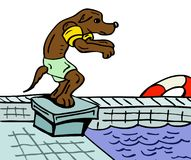 Ready to swim. Cartoon illustration of a dog getting ready to swim Royalty Free Stock Photos
