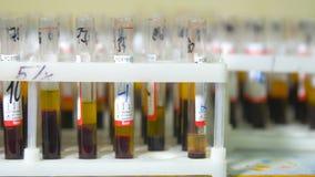 Reageerbuizen met bloed stock videobeelden