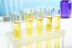 Reagenzgläser im Labor, stockbilder