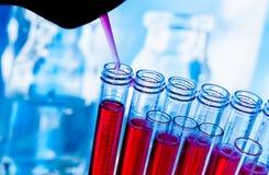 Reagenzgläser mit Pipette auf roter Flüssigkeit im Labor Stockfoto