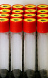 Reagenzgläser (Reagens) Lizenzfreie Stockbilder