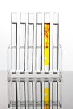 Reagenzglas für die Prüfung in einem chemischen Labor Lizenzfreie Stockfotografie
