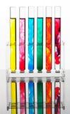Reagenzglas für die Prüfung in einem chemischen Labor Lizenzfreies Stockfoto