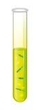 Reagenzglas mit flüssiger und gelber Bakterienzelle Vektor Lizenzfreie Stockfotos