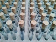 Reagenzglas mit Flüssigkeit Lizenzfreie Stockfotografie