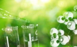 Reagenzglas und Wassertropfen mit chemischer Struktur der Wissenschaft auf g Stockfotografie