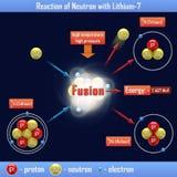 Reakcja neutron z Lithium-7 Fotografia Royalty Free