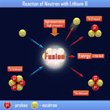 Reaktion des Neutrons mit Lithium-6 Stockbilder