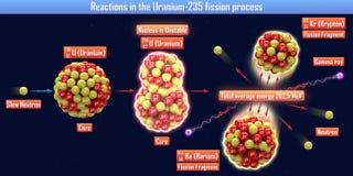 Reaktioner i processen för klyvning Uranium-235 Royaltyfri Bild
