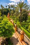 Real Alcazar Gardens in Seville Andalucia Spain stock image