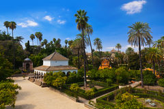 Real Alcazar Gardens in Seville Spain Royalty Free Stock Image