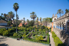 Real Alcazar Gardens in Seville. Stock Image